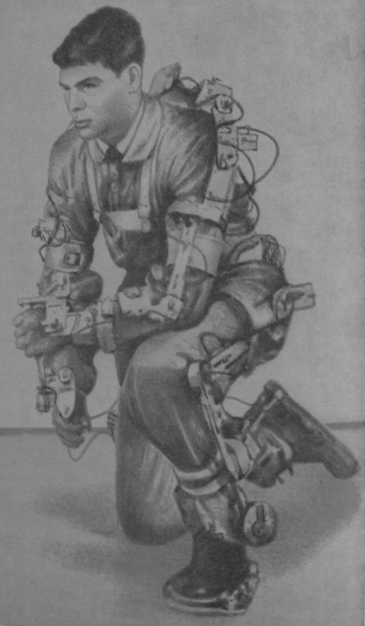 Exoskeleton of N. Mizen